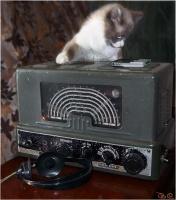 С Днем Радио и Связи!