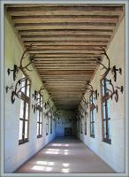 Галерея оленьих рогов в замке Шенонсо