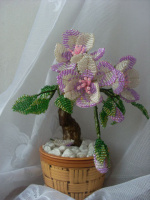 Цветочный бонсай