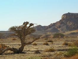 Пейзажи Иудейской пустыни