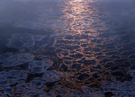 Музыка льдов