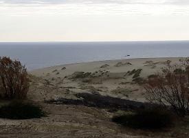 Объясните почему линия горизонта много выше точки съемки? Снимала с вершины дюны, высота которой 30 м.