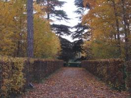 Франция. Осень. Parc de Sceaux