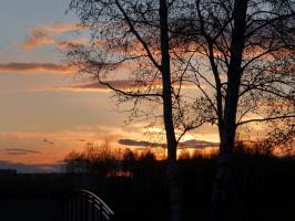 закаты мая