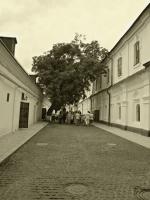 По улицам Печерской Лавры.