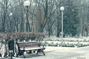 Зимним днем.