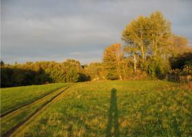 И тени на поля ложатся...)