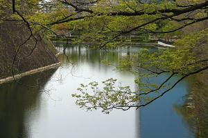 Река мечты (Пейзаж)