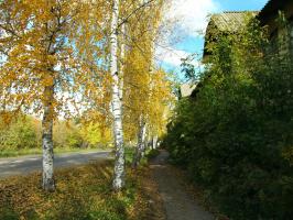 Улица ведущая в центр - самое начало ул.Ленина. Октябрь.