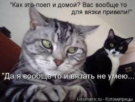 kotomatrix_30
