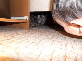 От меня не спрячетесь!