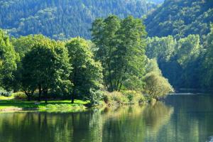 Тихая речка.