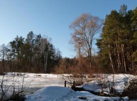 Пруд зимой