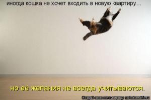 kotomatrix_20