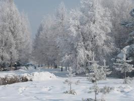 Зима не  отпускает