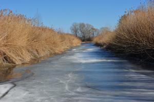 Скоро лёд тронется
