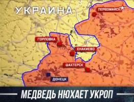 """Дебальцевский котел: медведь нюхает """"укроп"""""""
