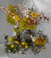 Пусть Весна расцветает, а с ней и Вы милые женщины!!!