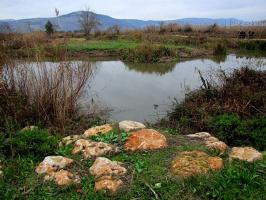 Израильские пейзажи - 3