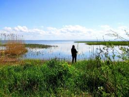 Побережье Балтики. Куршский залив.