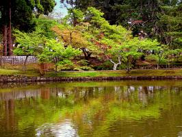 """""""В старом парке царствовала осень, Красила деревья и кусты. Яркие платки, на плечи бросив, Ставила художникам холсты..."""" (2 снимка)"""