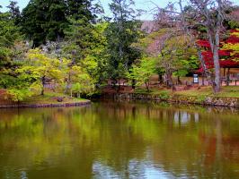 """""""В старом парке эхо плачет гулко, В синем небе - клёкот журавлиный... Осень, осень - древняя шкатулка Полная гранатов и рубинов!"""""""