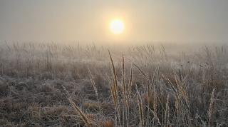Утренний морозец
