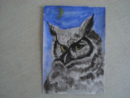 Филин.  акварель  (открытка)