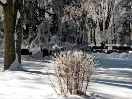 Волшебница- зима.