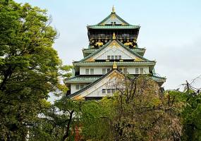 Яркая весна в Осака