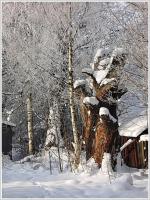 Осколок былого величия... После снегопада
