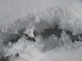 Кружевное дыхание моря