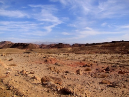 Дорогами пустынь (эффект трёхмерности при увеличении снимка)