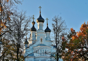 собор Владимирской Иконы Божией Матери ..
