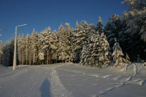 Солнечная лыжня
