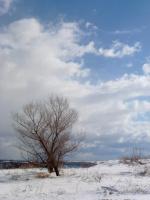 ещё один день зимы