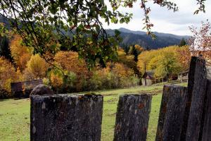 А за забором осень
