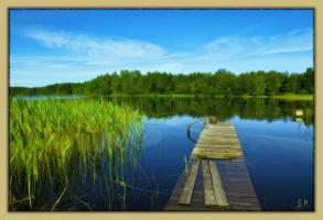 У озера...