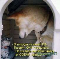1218169703_kotomatrix_06