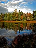 Осень в Гатчине -2