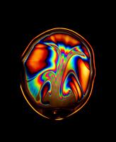 Симфония мыльной плёнки.........5 . Цветущая радуга.......