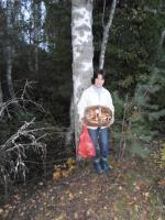 По грибы...Сентябрь 2013.