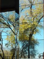 Зазеркалье осени