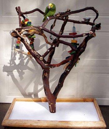 Дерево для попугаев своими руками 465