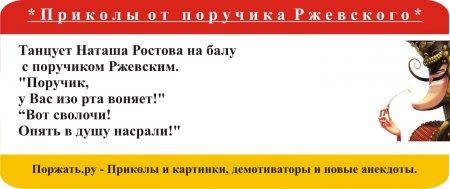 Анекдот Про Малиновую Косточку Поручик Ржевский