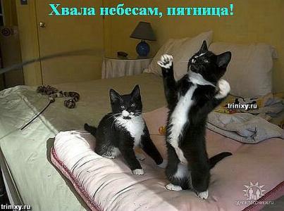 Здорово!!Пятница!!!!