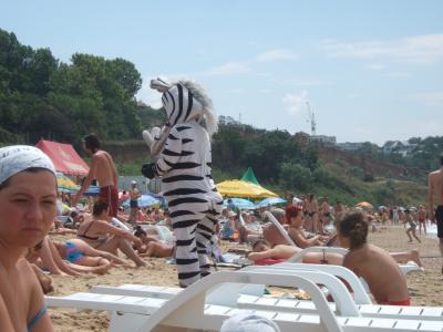 Это точно Мадагаскар?!