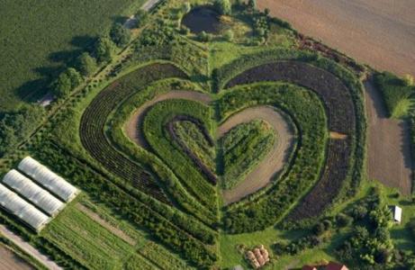 сердце в природе