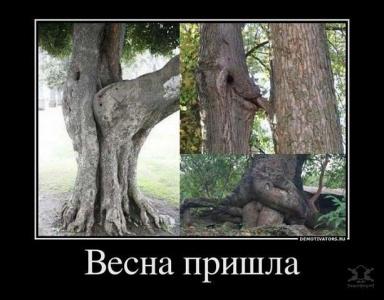 природа тоже любит