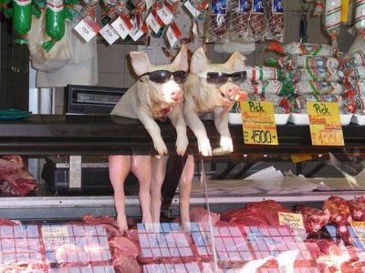 Мясные продукты от реальных пацанов